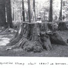 1887-gens